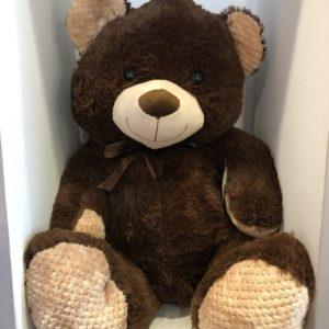 Dark Brown Bear